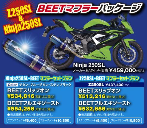 カワサキネット彩 オリジナル Ninja 250SL BEETマフラーパッケージ