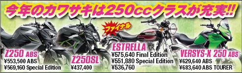 2017 250ccシリーズ