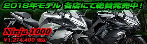 2018 Ninja1000